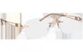 silhouette-occhiali-da-vista-donna-primavera-estate-2018